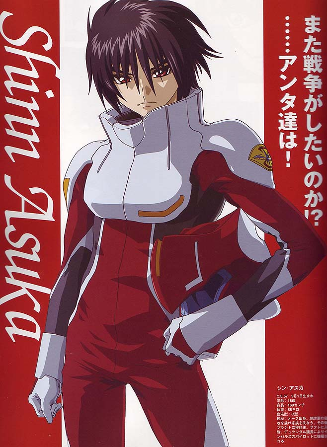 Gundam Seed nice pictures